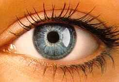 A woman's blue eye with RGP lenses and long eye lashes.